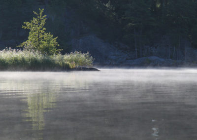 Vatten och dimma